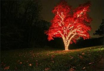 контурное освещение