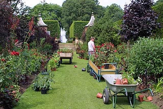 Дизайны садовых участков 6 соток фото своими руками 967