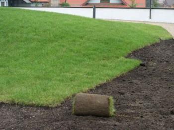 выбор и укладка рулонного газона