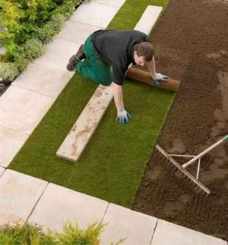 подготовка участка к настилу газона